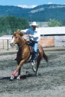 Glenn Sioux Falls