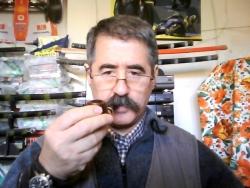 Germano Tavagnacco
